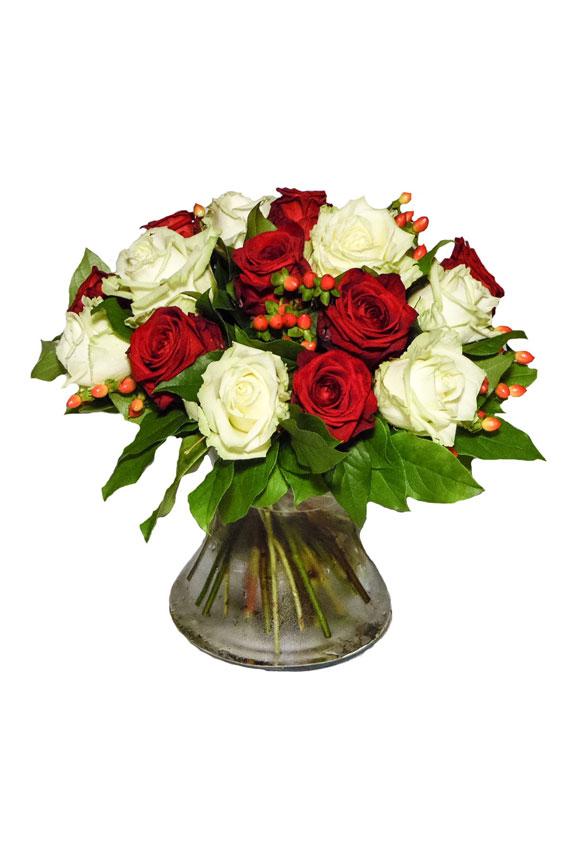 Wit-rode rozen mengeling