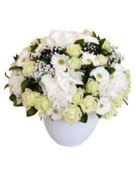 Witte seizoensbloemen
