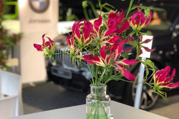 Classic Car Event Brasschaat met Flrm